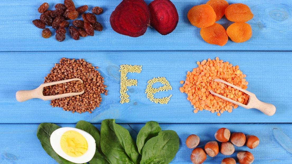 fER Nutrition