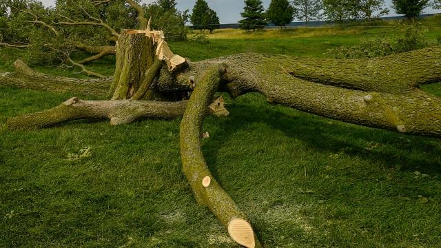 Le mauvais temps cause l'interruption de l'Omnium de golf senior