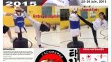 http://francoischassaytkd.wix.com/taekwondolaurentides