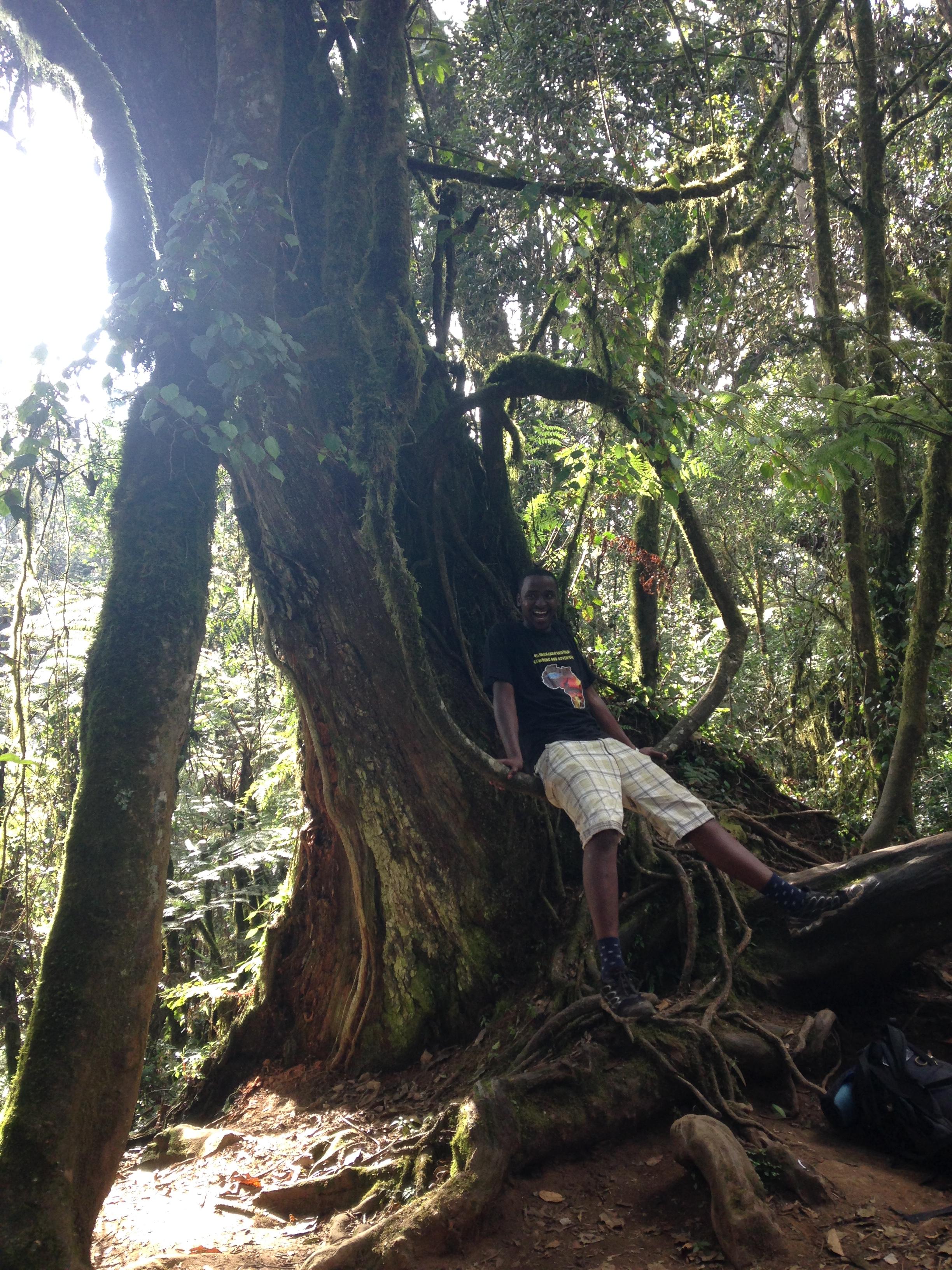 Notre guide qui se balance sur la liane