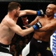 Michael Bisping et Anderson Silva