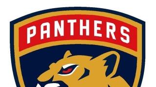 Panthers Nouveau Logo