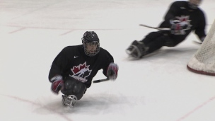 Le hockey luge pour s'accrocher