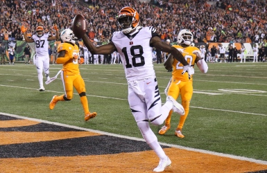 Une performance dominante pour AJ Green