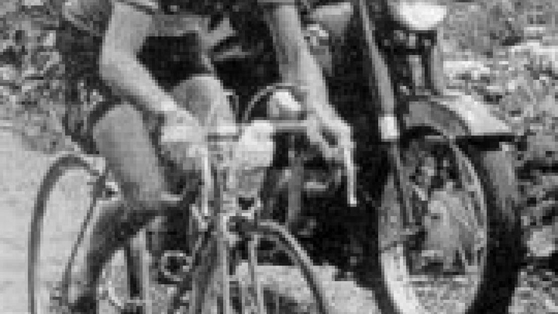 193421.jpg