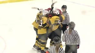 Le Centre-du-Québec s'illustre en hockey féminin