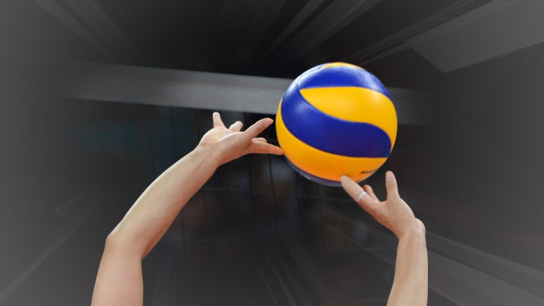Logo défaut volleyball