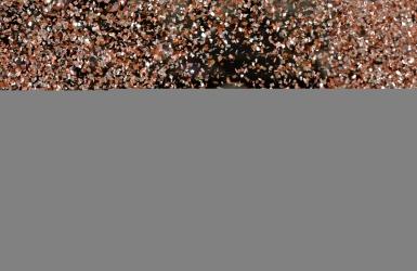 Schwartzman a remporté le titre à Rio