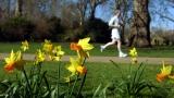 Un coureur au printemps.