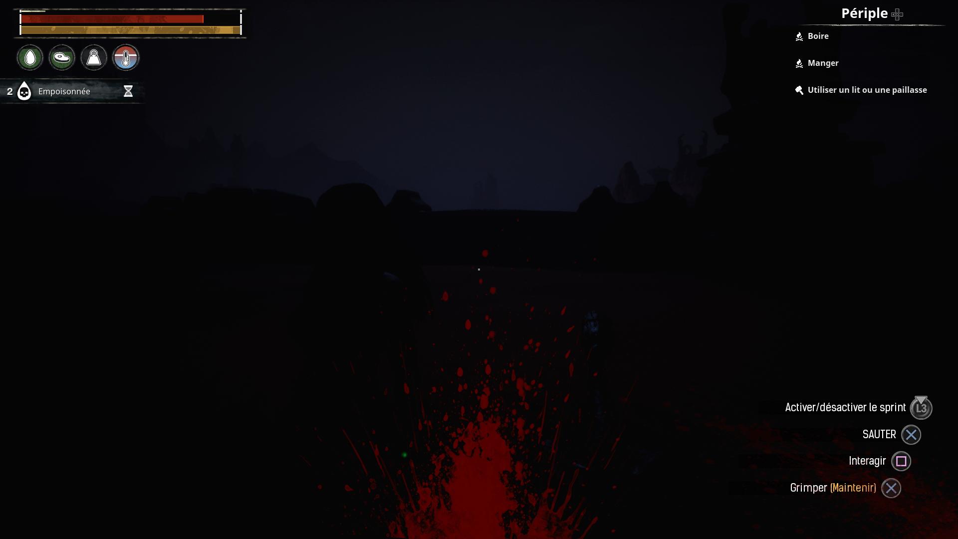 Un combat de nuit sans torche donne ça à l'écran.
