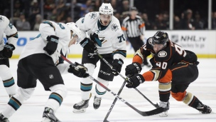 Sharks 7 - Ducks 3