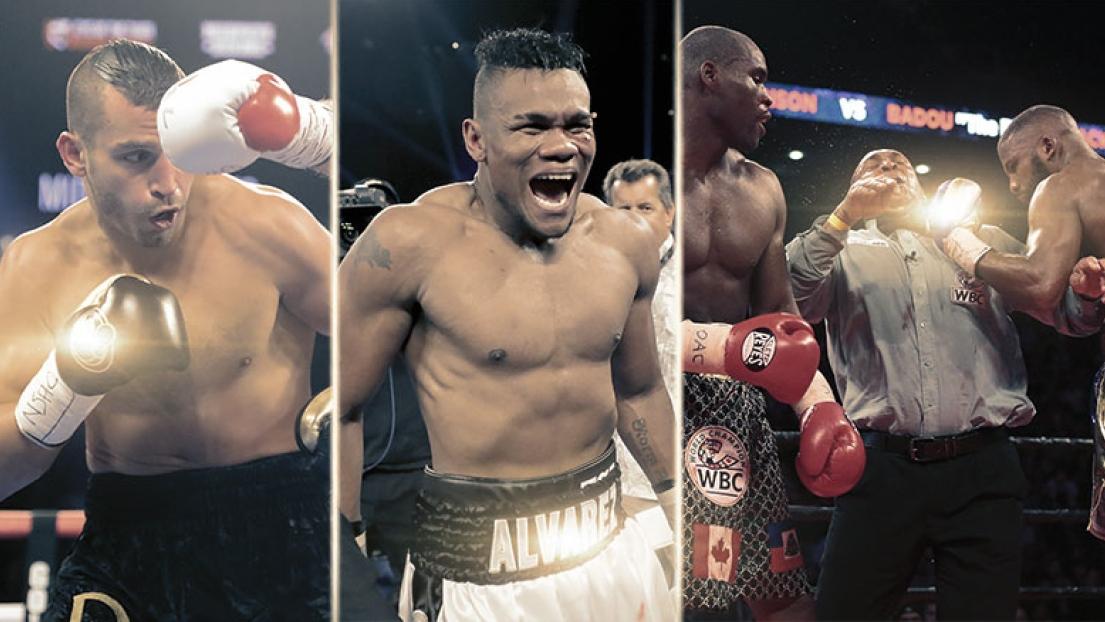 Revue de l'année boxe
