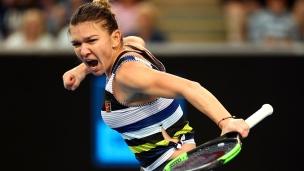 Halep élimine Venus et affrontera Serena