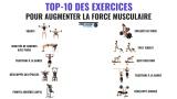Top -10 exercices