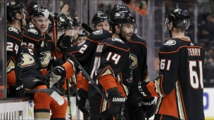 Panthers 2 - Ducks 3