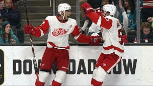 Red Wings 3 - Sharks 2