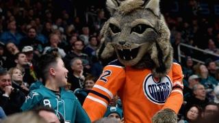 Hunter, mascotte des Oilers