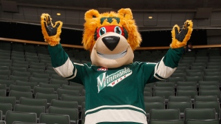 Nordy, mascotte du Wild du Minnesota