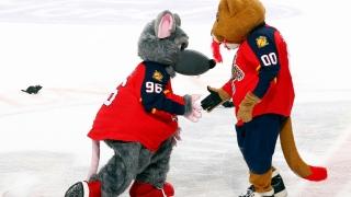 Stanley C. Panther et Viktor E. Rat, mascotte des Panthers de la Floride
