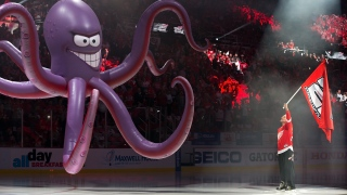 Al the Octopus, mascotte des Red Wings
