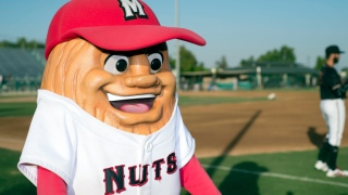 Al the Almond, Modesto Nuts (Niveau A, Mariners de Seattle)