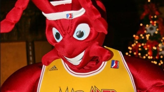 The Mad Ant, Mad Ants de Fort Wayne (G-League)
