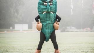 Fighting okra (Delta State, NCAA)