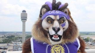 Kingston, mascotte du Orlando City SC