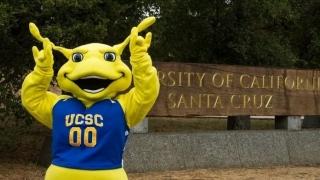 Banana Slug (UC Santa Cruz)