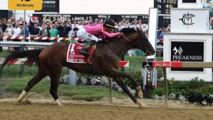 Preakness : War of Will l'emporte, Bodexpress en solo