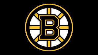 Logo Boston Bruins