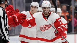Red Wings 4 - Ducks 3 (Prolongation)