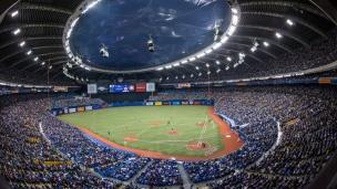Rays : pas de garde partagée à Montréal