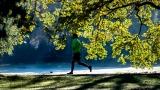 Un coureur dans un parc