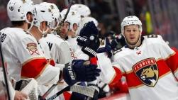 Panthers vs Red Wings.jpg