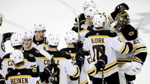 Bruins36.jpg
