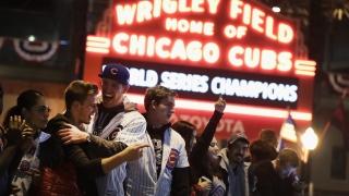 Fans des Cubs