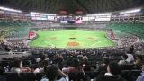Stade de Fukuoka