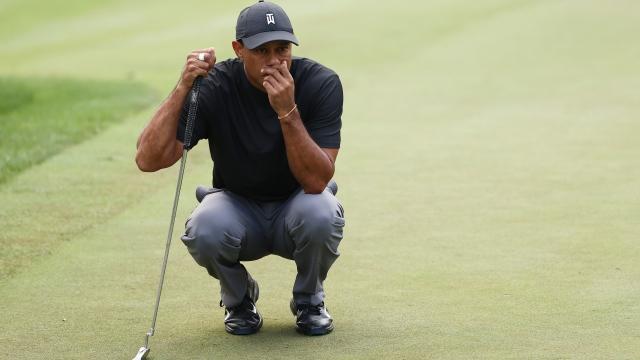 Une photo encourageante pour Tiger Woods