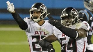 Falcons2.jpg
