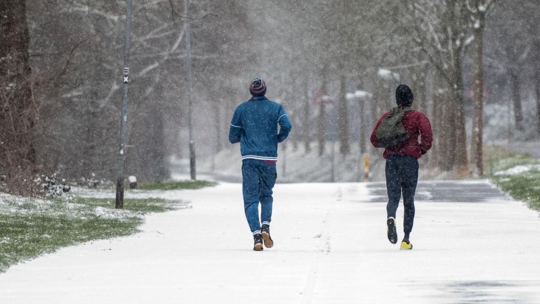 Des coureurs dans la neige